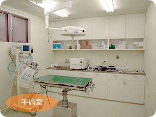 きび動物クリニック:手術室