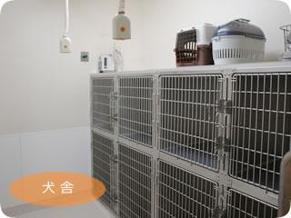 きび動物クリニック:犬舎
